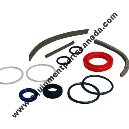 FORWARD 2 POST DP SERIES SEAL KIT (CHINA CYLINDER) OEM 92317